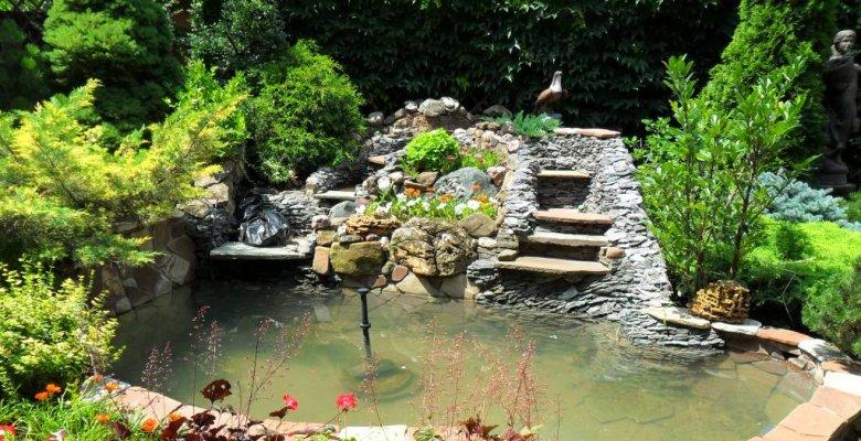 Озеленение и водоем в Краснодаре